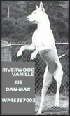 Riverwoodvanille Eis Dan-Mar